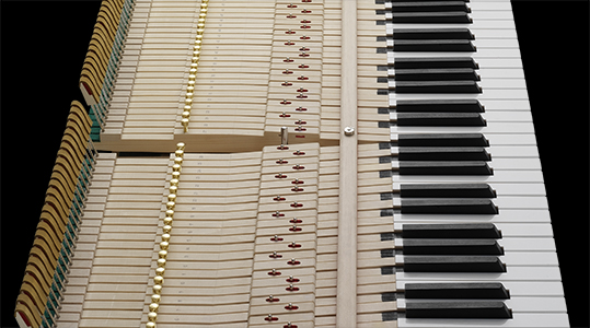 uncovered view of piano keyboard action
