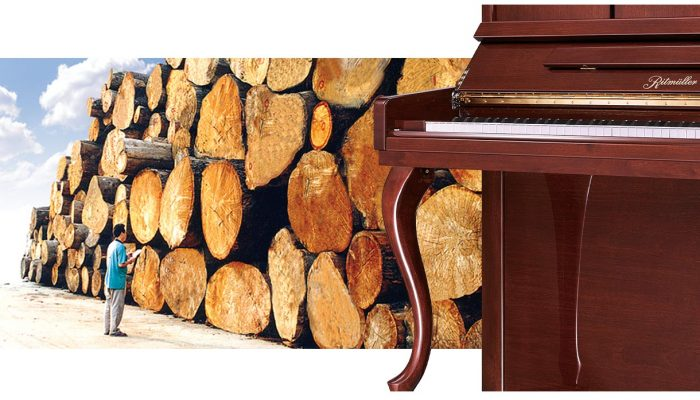 Finest Quality, Seasoned Hardwoods